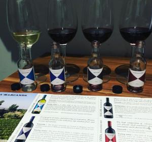 A Zoom wine taste? Yes please!
