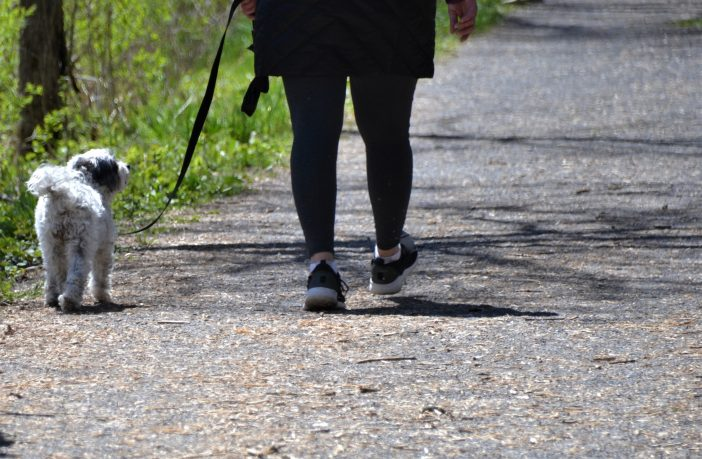When is a walk not just a walk? When you follow our expert tips to get the maximum health benefits from your daily stroll.