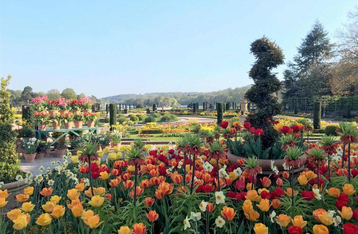 The Spring Bulb Festival at Trentham Gardens